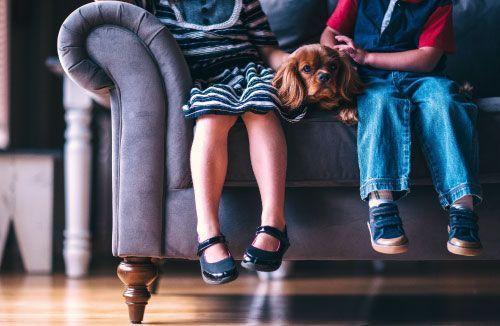 psicologo infantil a domicilio malaga